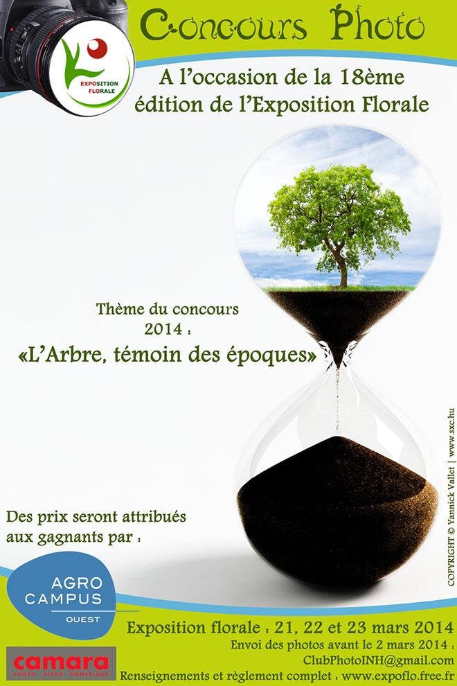 concours-arbre