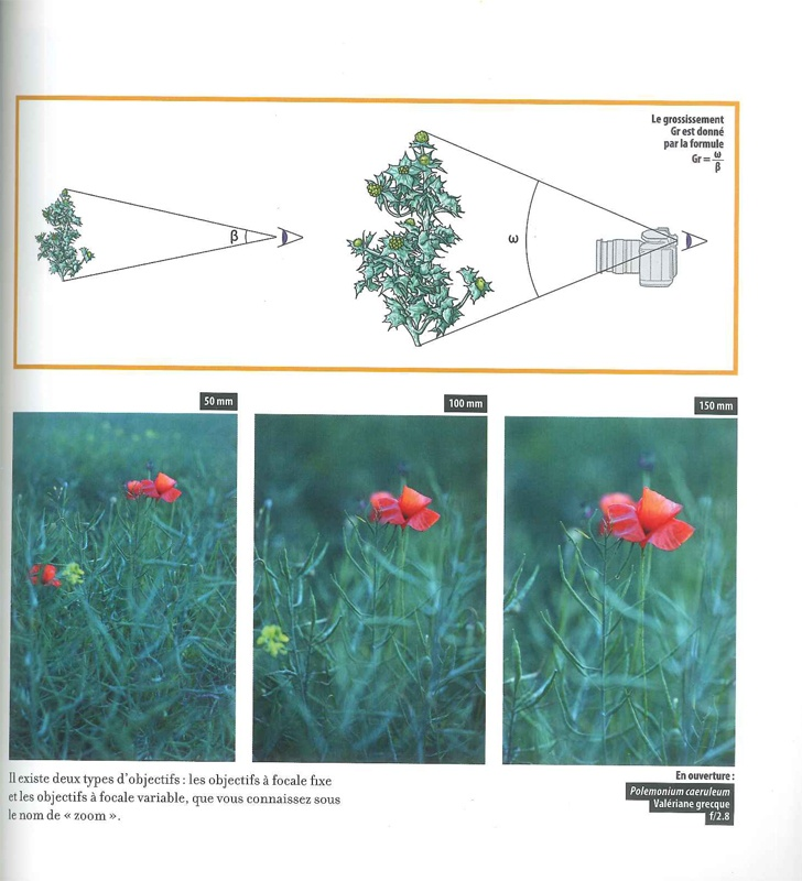 page1_web