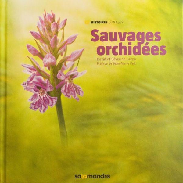 sauvages-orchidées_rp1