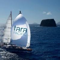 Les lauréats de l'expédition Tara Pacific 2016-2018