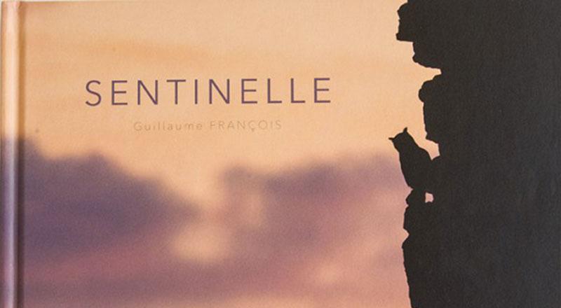 """Livre """"Sentinelle"""" de Guillaume François"""