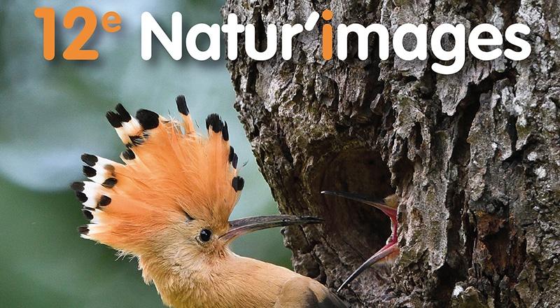 Natur'images, 12ème édition du festival photo nature à Tignécourt - Vosges