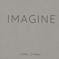 """""""Imagine""""  livre de Fabien Dubessy"""