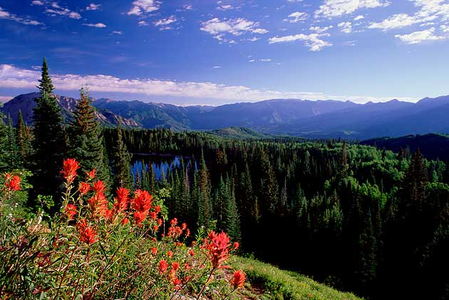 Gothic Fall Wallpaper Colorado Mountain Property Leadville Amp Salida Real
