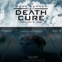 Maze Runner: Do the Ends Justify the Means?