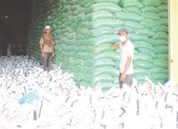 Kho trữ gạo của công ty lương thực Long An. Photo courtesy of longan.gov.vn