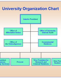 University orgchartg also organization chart rh rff