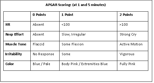 Printable Sheet Score Apgar
