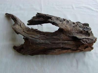 Medium Driftwood