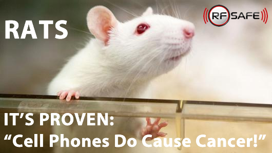 Smartphones Do Cause Cancer - U.S. Government Expected To Advise ...