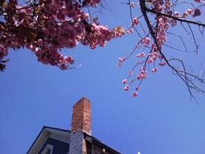2012年春