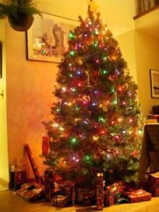 今年のクリスマスツリー♪