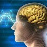 Neurociencia y prevención de accidentes y enfermedades