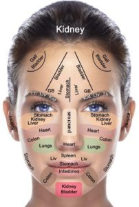 diagram for pimples on face block of digital tachometer reflexzone therapie - rg