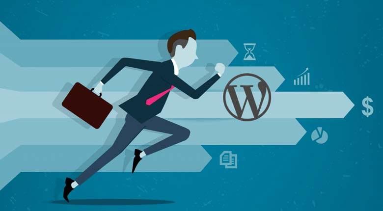Como melhorar a performance e otimizar a velocidade do seu site WordPress