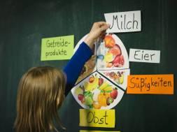 NGG_Schulfach_Ernährung[1]