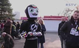 Orakel zur Handball-WM im Kölner Zoo