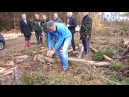 Ein Baum für jedes Mitglied – VR-Bank pflanzt 3.000 Setzlinge in Siegburg