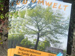 umweltprogrammheft_2020-web