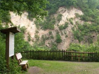 Geologischer Aufschluss am Weilberg
