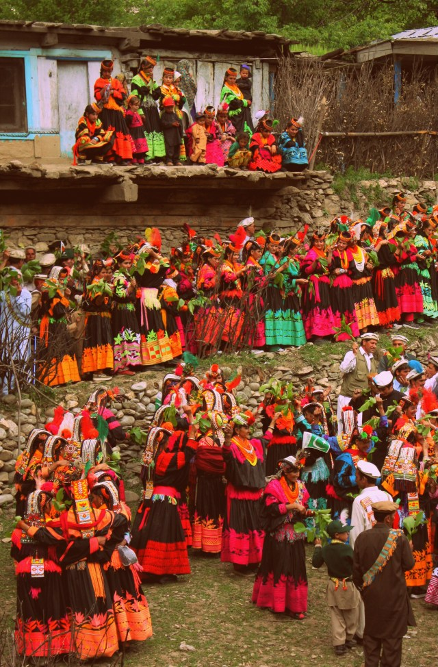Rh Negative Tribes: The Kalash People of Pakistan Spring_festival_kalash