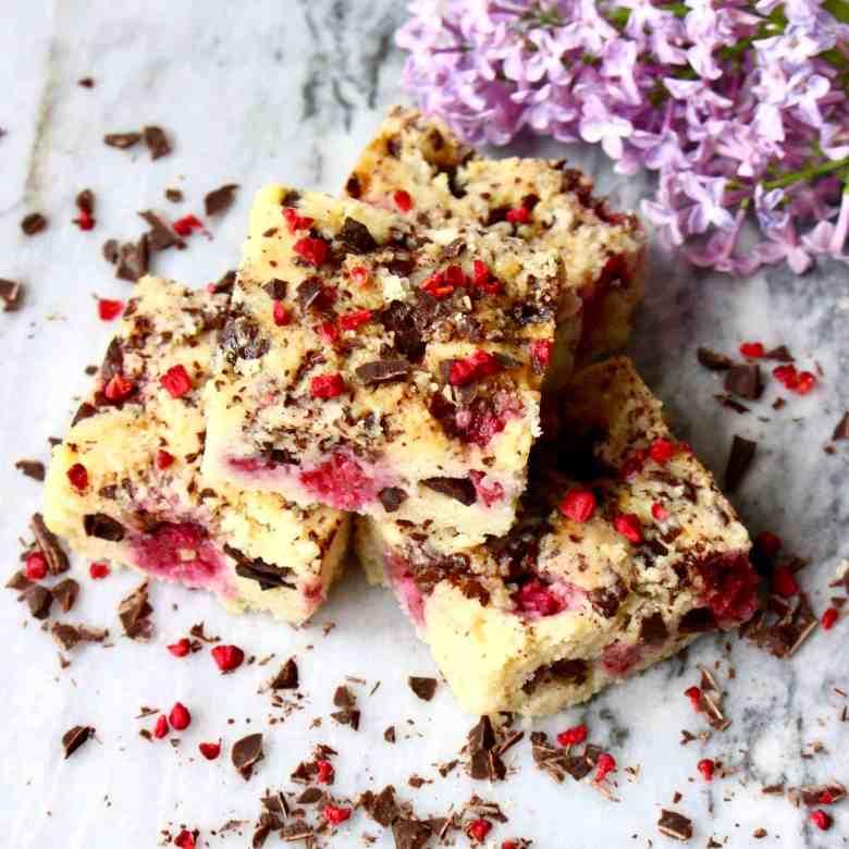 Vegan Raspberry Dark Chocolate Blondies