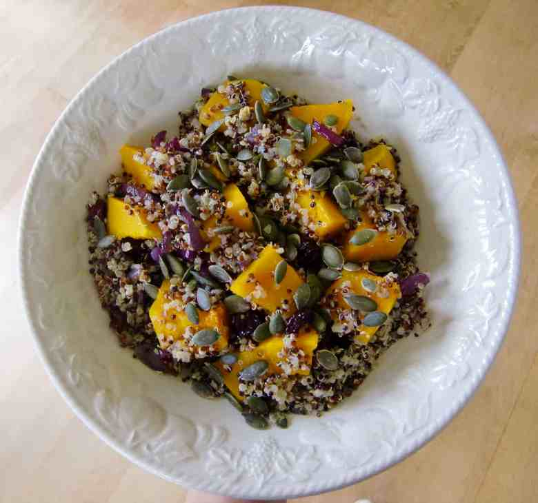 Pumpkin Cranberry Quinoa Salad (Vegan + GF)