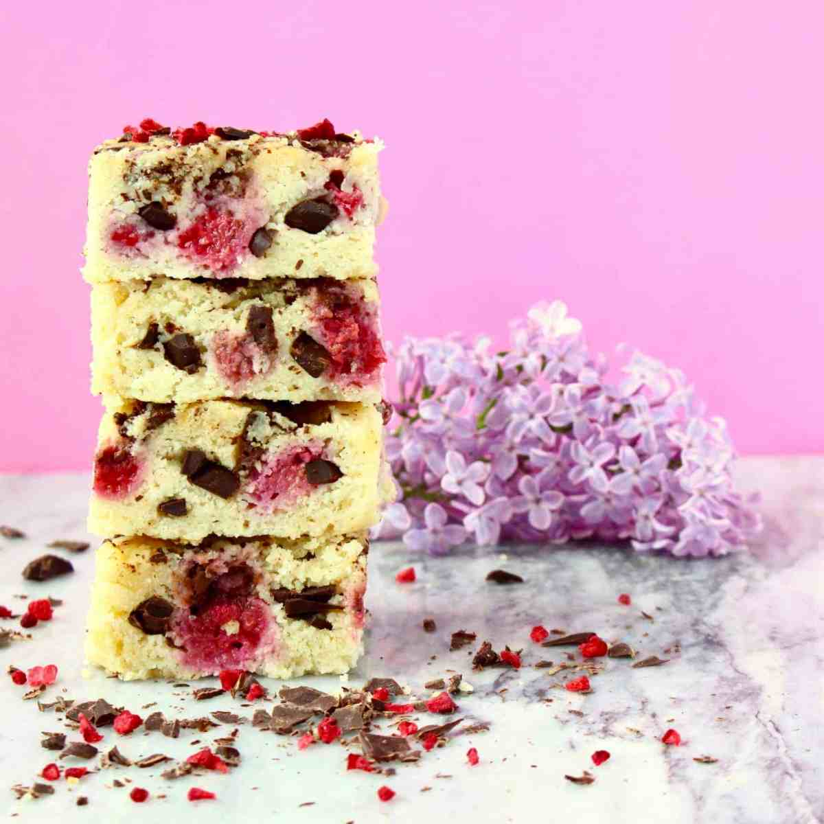 Vegan Raspberry Dark Chocolate Blondies (GF)