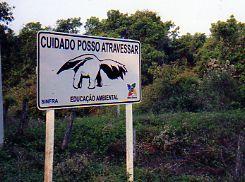 Znak drogowy w Brazylii