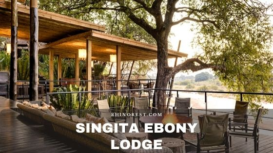 Singita Ebony Lodge – Amenities | Reviews | Rooms