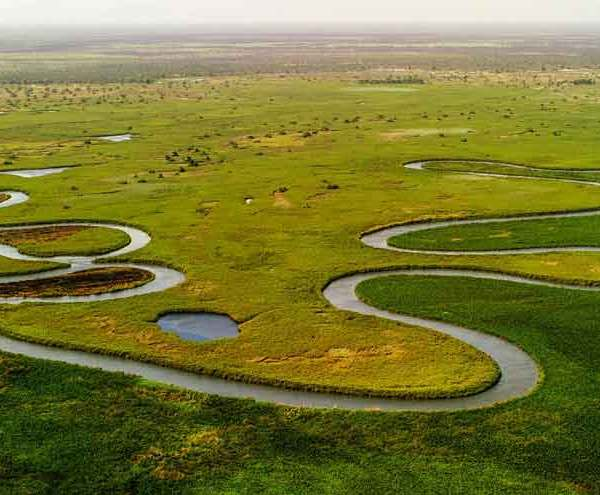 22 Curious Facts About The Okavango Delta