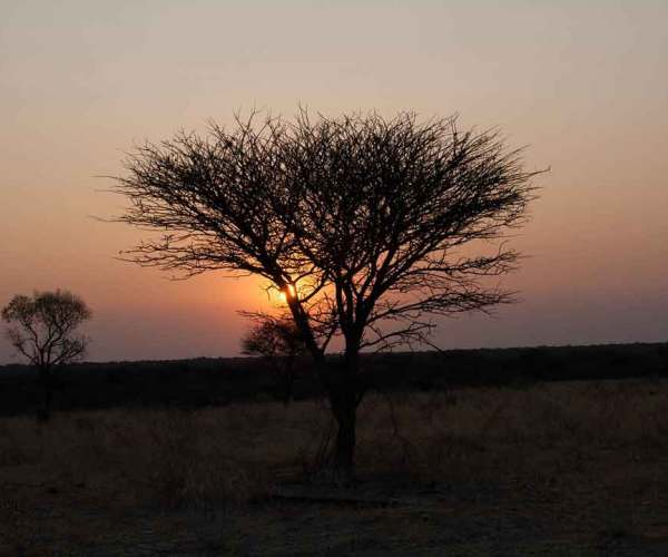 10 Reasons Travelers Choose Namibia Vacation On Top