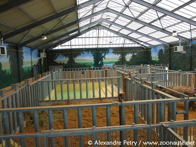 Innenanlage mit Blick auf den Pool, Beauval, 15. April 2010