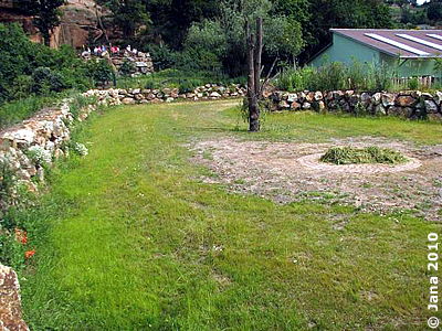 Außenanlage Bereich Manjula, links hinten Besucherplattform, 6. Juli 2010