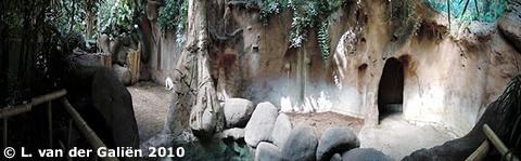 Blick in einen Teil des Innenbereiches von Fanindra, 8. Juli 2010