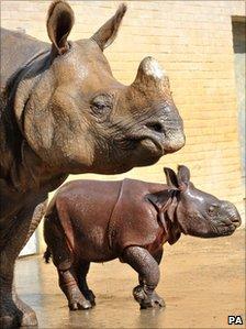 Mama Behin mit Baby Ajang, 9. September 2010