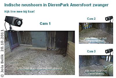 Über eine eigene Seite des Tiergaarten Amersfoort lassen sich die drei Webcams starten, 20. Oktober 2011