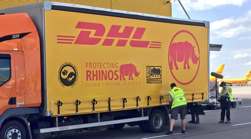 DHL Rhino-Transport