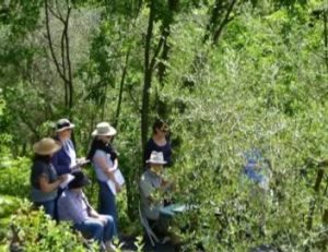 Plein air sketching class in Tuscany, Italy