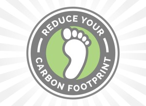 Reduce Your Carbon Footprint with Eco Friendly Flooring