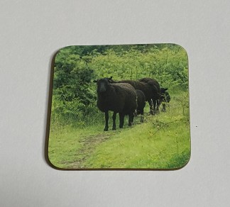 The Black Sheep Family on a photographic hardboard coaster. Square hardboard coaster with rounded edges. Size: 90x90x3 mm Weight: 0.1kg