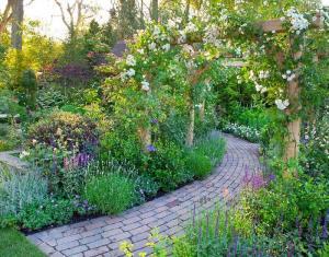 Garden Design Contemporary Garden Plants Rhs Gardening