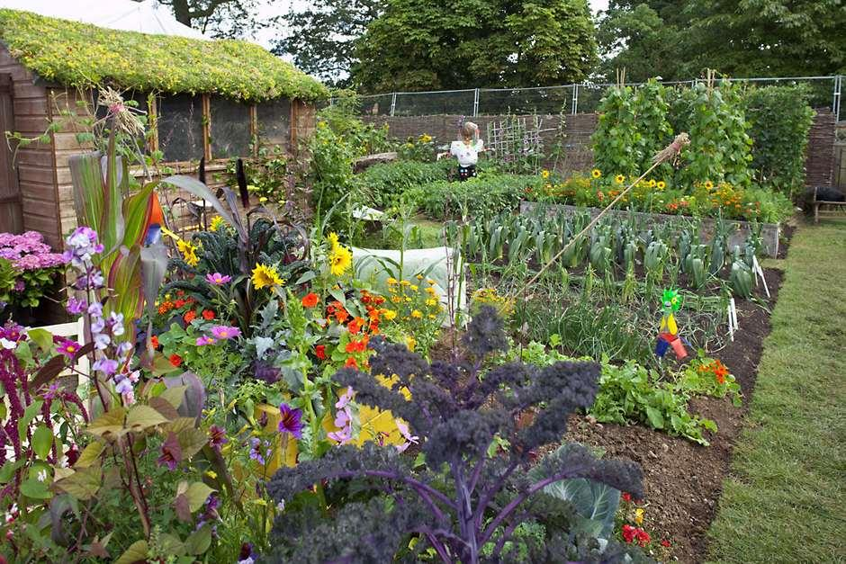 allotments how get the