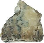bluecheese1