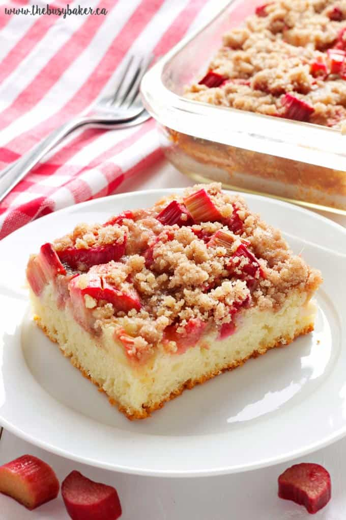Rhubarb streusel cake + 15 of the BEST vegetarian rhubarb recipes from around the web!