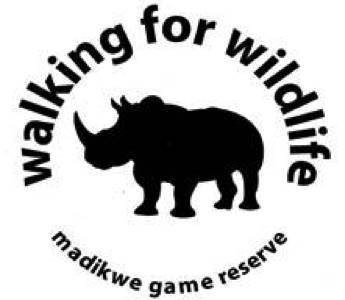 Madikwe Rhino Walk: A day to celebrate – blog