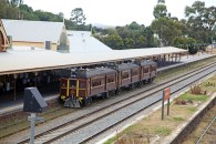 The Tin Hares at Cootamundra Station