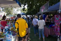 Just some of the hundreds of people visiting the Festival Markets in Memorial Park
