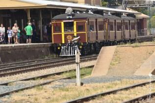 Tin Hares -- Vintage Rail Motors at Junee Station [2015 Rhythm n Rail]