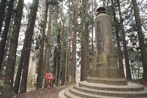 經典雜誌【全球觀察】農業與山林的戰爭 當莊稼漢遇見臺灣樹